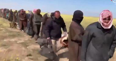 """خبير عراقى: الدواعش أحرقوا المحاصيل لأخذ """"إتاوات"""" من المزارعين"""