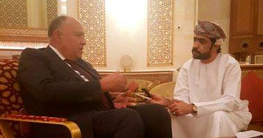 وزير الخارجية : مصر ليس لديها أى شروط لعودة سوريا إلى الجامعة العربية