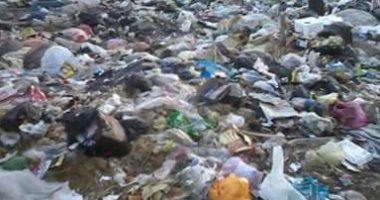 قارئ يشكو من انتشار القمامة والأوبئة فى قرية المعصرة بالدقهلية