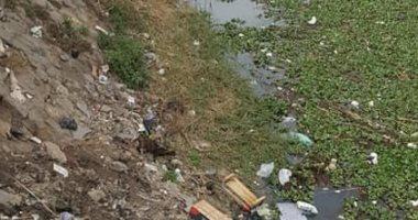 قارئ يشكو حيوانات نافقة وقمامة بفرع نهر النيل فى السنبلاوين