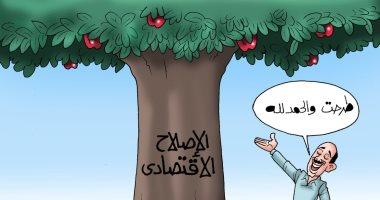 شجرة الإصلاح الاقتصادى تطرح ثمارها فى كاريكاتير اليوم السابع