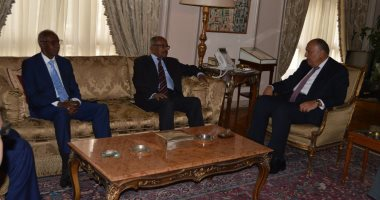 Sameh Shukri discusses regional issues and the security of the Red Sea with the Minister of Foreign Affairs of Eritrea