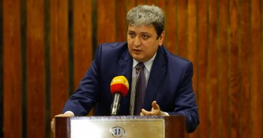 صور.. منظمة حقوقية: الدولة المصرية تقوم بجهود كبيرة للنهوض بالمرأة والطفل