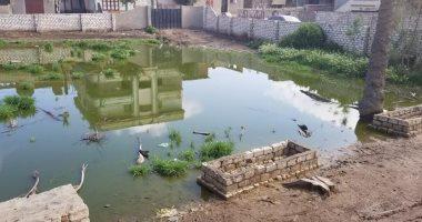 اضبط مخالفة.. غرق شوارع قرية الشهيدى فى المحلة بالصرف الصحى