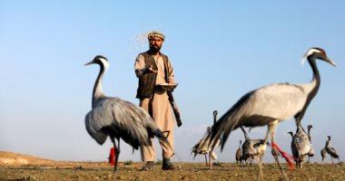 """أفغانستان مش بس إرهاب.. يوم فى حياة """"صائد طيور"""" أفغانى"""