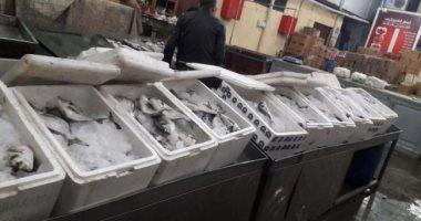 شعبة الأسماك: زيادة عدد السكان يرفع استهلاك مصر السنوى لـ2 مليون طن سمك