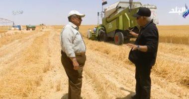 الزراعة: 15 ألف جنيه معدل ربح فدان القمح فى مشروع غرب المنيا.. فيديو