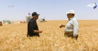 وزير الزراعة: 45% نسبة الاكتفاء الذاتى من القمح والتراجع بسبب الزيادة السكانية