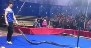 أفعى تخنق مدرب السيرك أثناء العرض.. والشرطة الروسية: لا نعلم شيئا.. صور