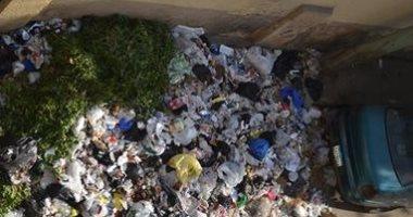أكوام من القمامة والكلاب الضالة.. شكوى أهالى المنطقة الأولى بمدينة نصر
