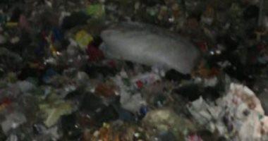 شكوى من انتشار أكوام القمامة فى شارع التروللى بالمطرية