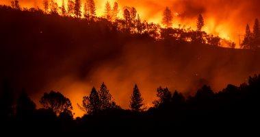 إحصاء: إضرام النار المتعمد والإهمال وراء حرائق الغابات فى اليونان
