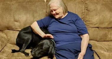 """""""ينفع فيلم هندى"""".. كلب ينقذ مسنة من نوبة قلبية رغم كرهها له"""