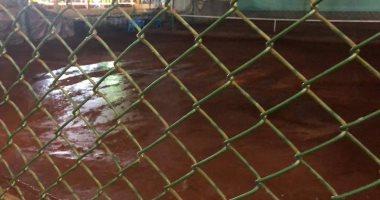 """أزمة التنس الأرضي تدفع """"نافع"""" للإستقالة من مجلس البلدية"""