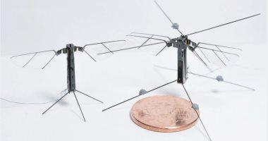 فيديو.. علماء يطورون حشرة روبوتية ذات أربعة أجنحة يمكنها الطيران