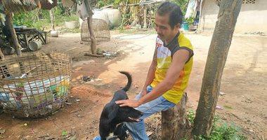 فيديو وصور.. الكلب البطل ينقذ رضيعا دفن حيا فى تايلاند ..اعرف الحكاية