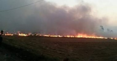 صور.. حريق القمامة فى العبور خطر حقيقى يدمر البيئة والسكان