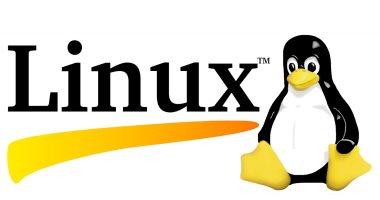 بسبب مخاوف التكلفة.. حكومة كوريا الجنوبية تتحول لنظام Linux -