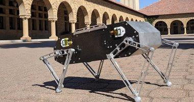 طلاب بجامعة أمريكية يبتكرون روبوت كلب يمكنه القفز والرقص