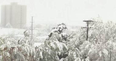 شاهد.. عاصفة ثلجية تضرب ولاية كولورادو الأمريكية وإلغاء الرحلات الجوية
