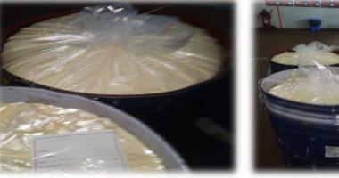 ضبط مصنع مواد غذائية يحتوى على كمية كبيرة من الجبن والعصائر غير صالحة