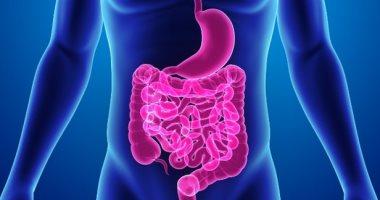 خضار شائع ينهي مشاكل القولون ويقي من العديد من الأمراض الخبيثة بشكل فعال
