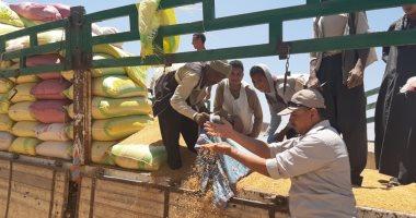 زراعة أسيوط: توريد 116 ألف طن قمح محلى لشون وصوامع