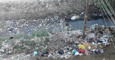 """""""بؤرة تلوث"""".. ترعة النجيلة تتحول لمقلب للقمامة والحيوانات النافقة"""