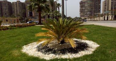 مطالب باستكمال طلاء العمارات المحيطة باستاد القاهرة استعدادًا للأمم الأفريقية