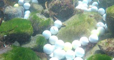 صور.. العشرات من كرات الجولف المفقودة على أرضية المحيط الهادئ