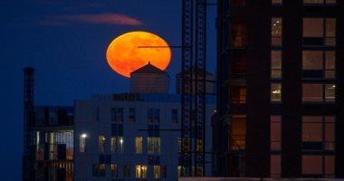 """غدًا.. قمر """"الفراولة الكامل"""" يزين السماء.. ويحتاج لمكان معتم لرؤيته"""