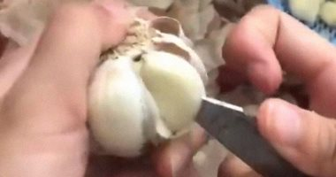 If you want to maintain the health of the digestive system and strengthen your immunity, eat garlic daily