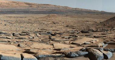 """""""الإمارات للفضاء"""" تعلن إرسال نوى من شجرة النخيل لزراعتها فى المريخ"""