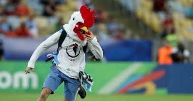 """صور.. مشجع بقناع """"فرخة"""" يقتحم مباراة أوروجواي وتشيلي"""