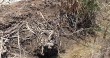 شكوى من انقطاع مياه الرى بقرية طيب بصان الحجر  بالشرقية بعد جفاف الترعة