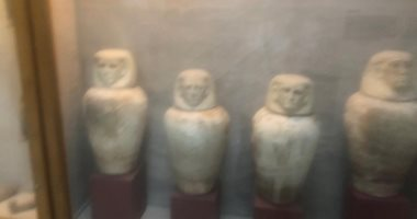 صور.. برلمانيون ومسئولون يتفقدون عددا من المناطق الأثرية فى الفيوم