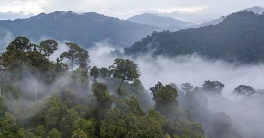 وزارة البيئة: التعدى على الطبيعة يُعرضنا لمزيد من الأخطار