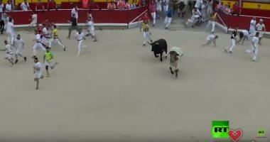 شاهد.. أحداث تحبس الأنفاس فى مهرجان مصارعة الثيران بإسبانيا