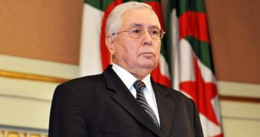 من هم أعضاء الهيئة الوطنية المستقلة للانتخابات فى الجزائر ؟ تعرف عليهم