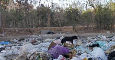 شكوى من انتشار القمامة بشارع الخزان بحدائق الأهرام