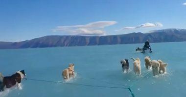 """""""احتباس حرارى وذوبان جليد""""..فيديو من """"جرينلاند"""" يثير قلقًا عالميًا"""