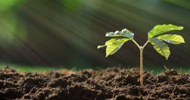 اكتشاف الجين المسئول عن تطوير النباتات لمكافحة تغير المناخ