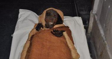 الآثار تحقق فى واقعة بصق زائر على مومياء سقنن رع فى المتحف المصرى