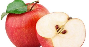 الزراعة تصدر 4 توصيات لأشجار التفاح خلال أغسطس لزيادة الإنتاج.. تعرف عليها