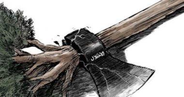 كاريكاتير الصحف السعودية .. الاحتلال يقتلع شجر الزيتون الفلسطينى