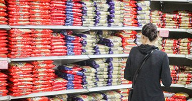 انخفاض أسعار الأرز والفول والذرة فى الأسبوع الأول لأغسطس