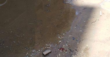 انتشار مياه الصرف الصحى بشارع محمد عرفة تقسيم أباظة ترعة بالمريوطية