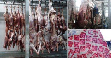 اعرف الطرق المثالية لتخزين اللحوم.. وكيف تضمن احتفاظها بقيمتها الغذائية