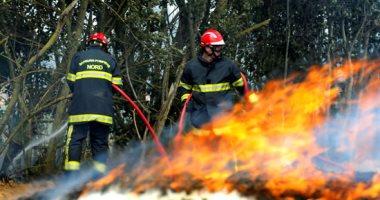 البيئة الإندونيسية: إتلاف 42 ألف هكتار فى حرائق الغابات بالبلاد