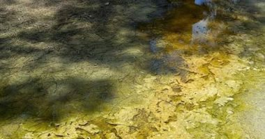 المعهد الأزهرى ببلقاس يغرق فى مياه الصرف الصحى